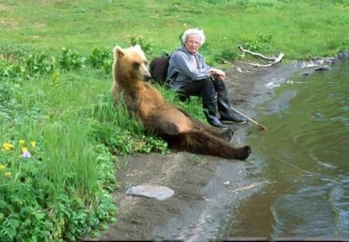 Bear_Is_Relaxed.jpg